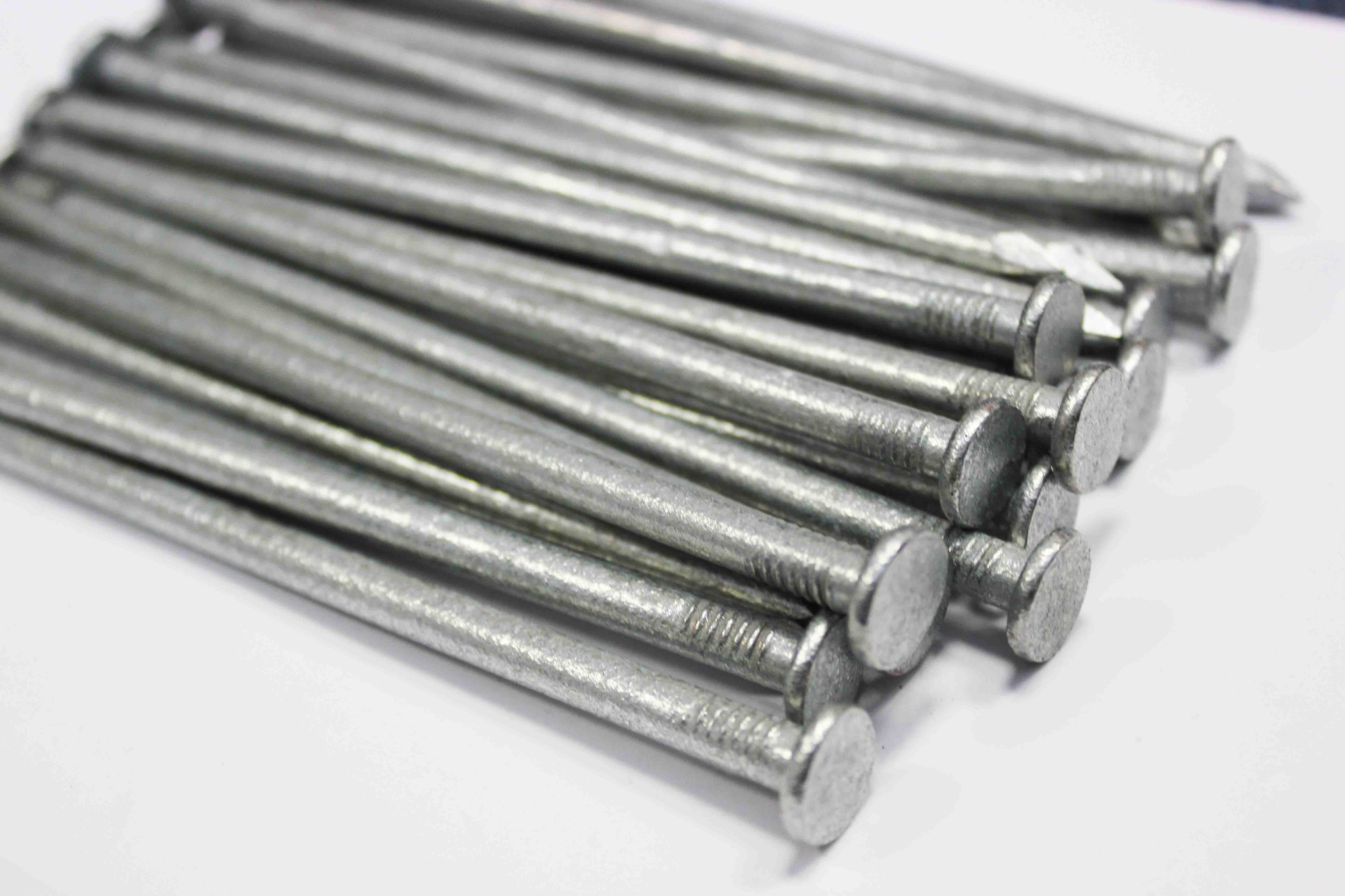 6 inch galvanised fencing nails