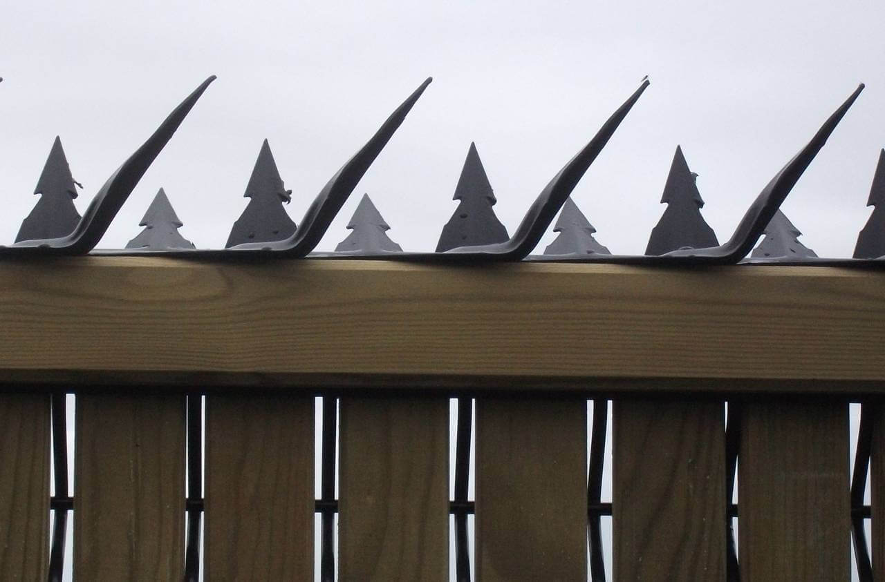 Fence Spikes | Jacksons Fencing
