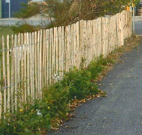 Cleft Chestnut Fencing | Chestnut Fences | Jacksons Fencing