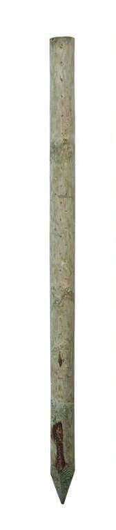All round peeled fencing stake