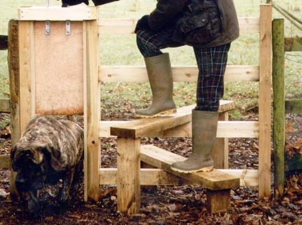 Stile with dog gate
