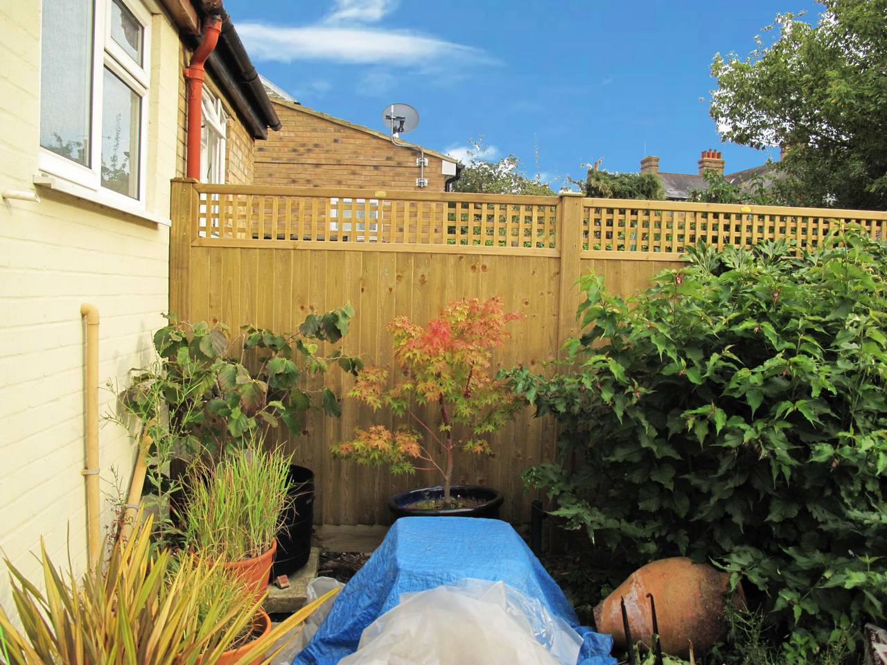 featherboard fence panels with lattice trellis top