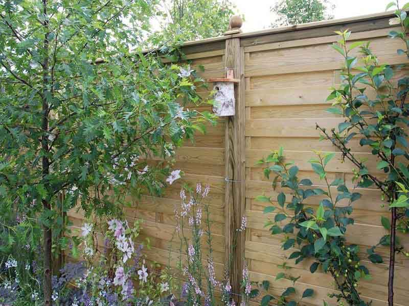 hit and miss Fencing Panels in urban nature garden