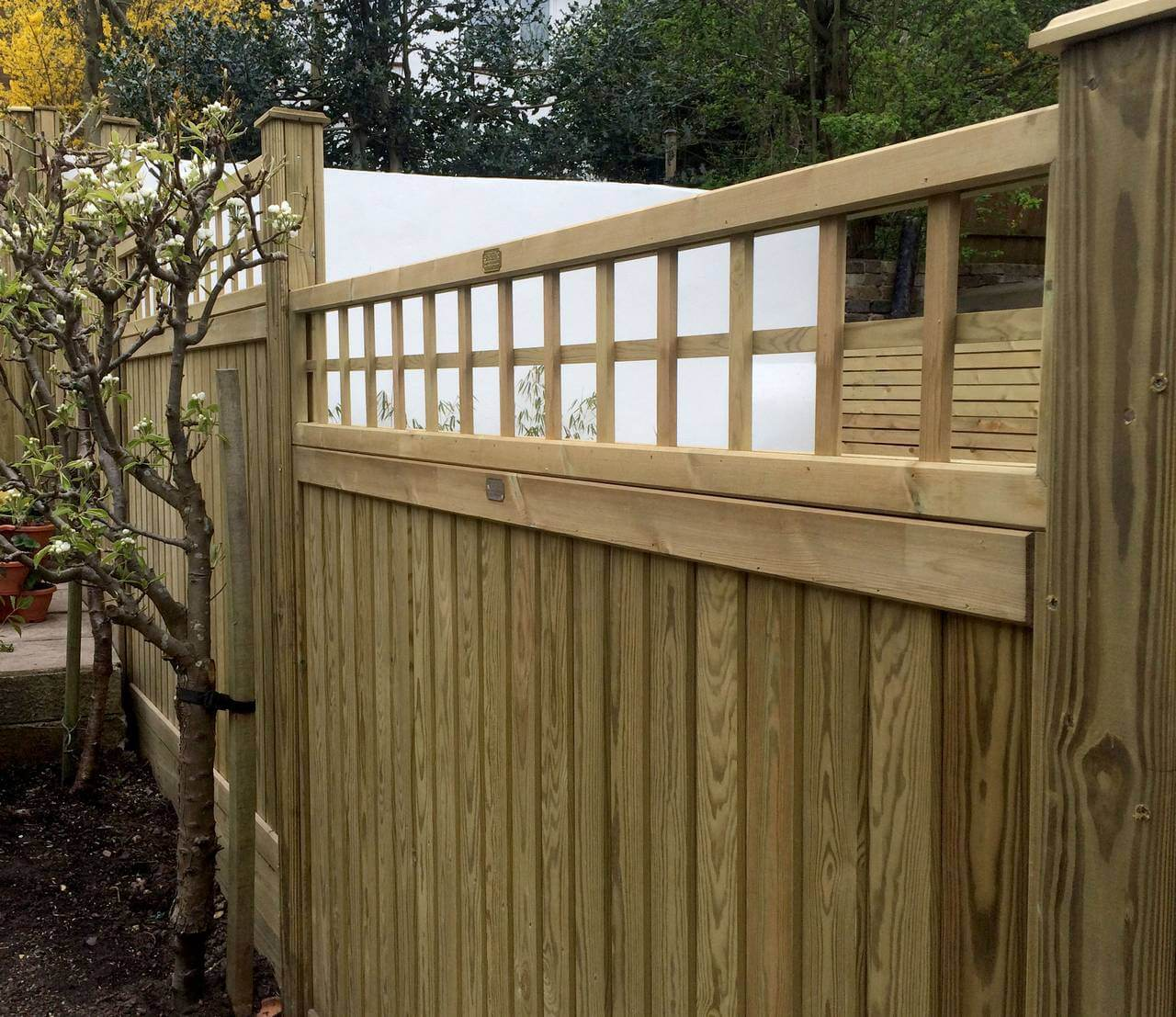 TnG fence panel with Trellis