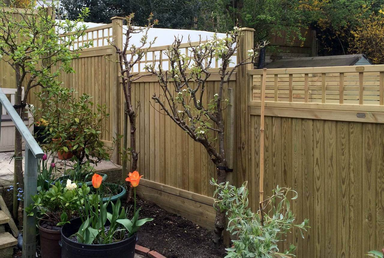 Square Trellis topper on Tng fence panels