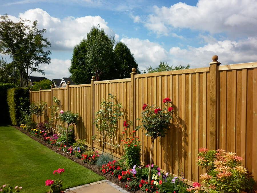 Solid fence with climbing plants