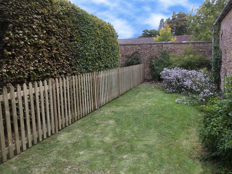 Traditional Picket Fence Creates Dog Fence For Garden The Edit Jacksons Fencing