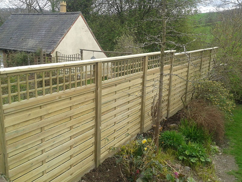 Hit and miss fencing panel with trellis finished