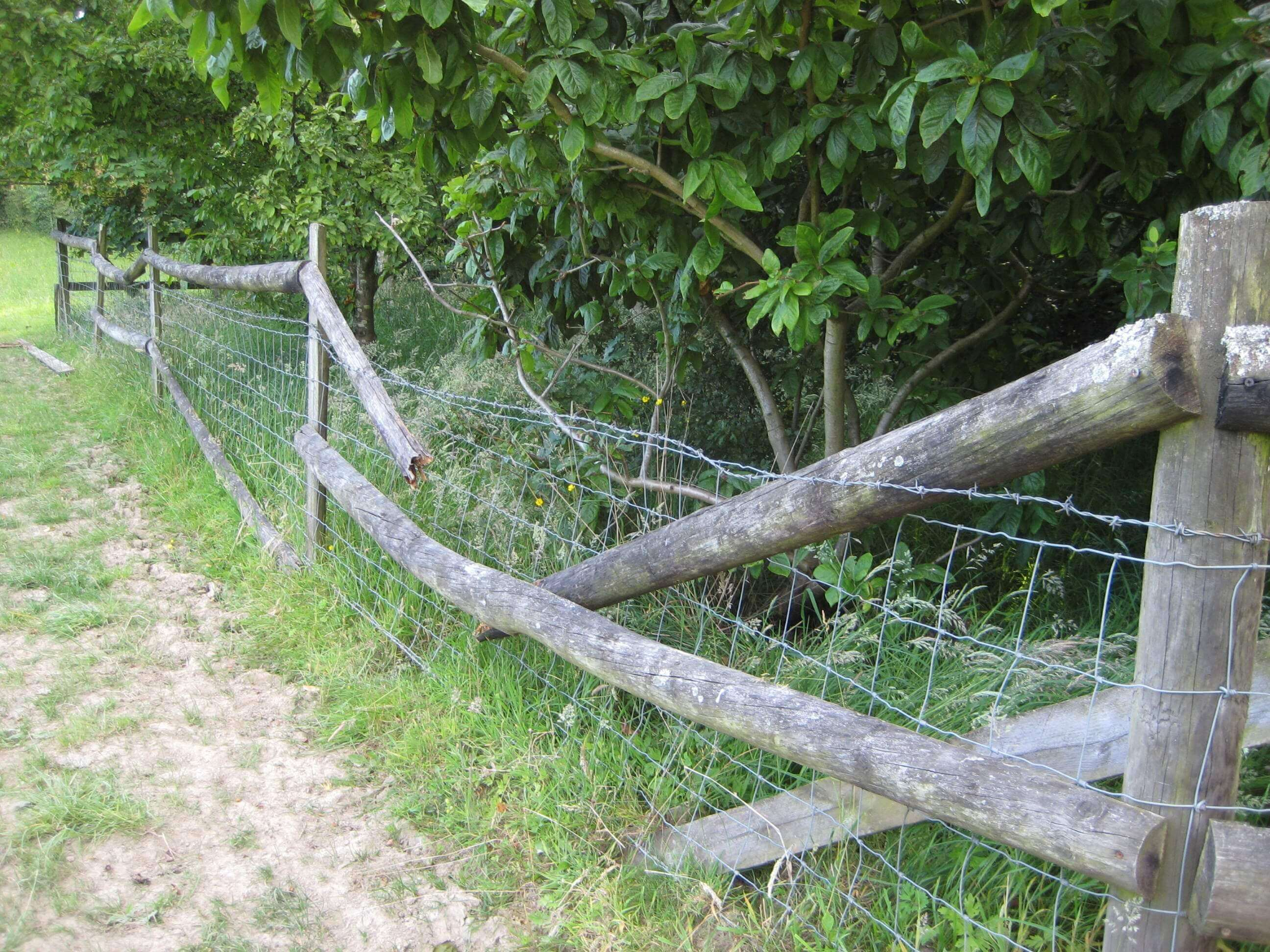 old fence with rotten rails
