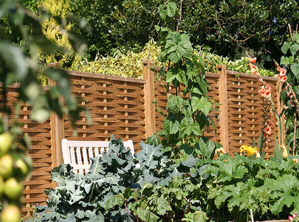 woven fence panels in veg garden