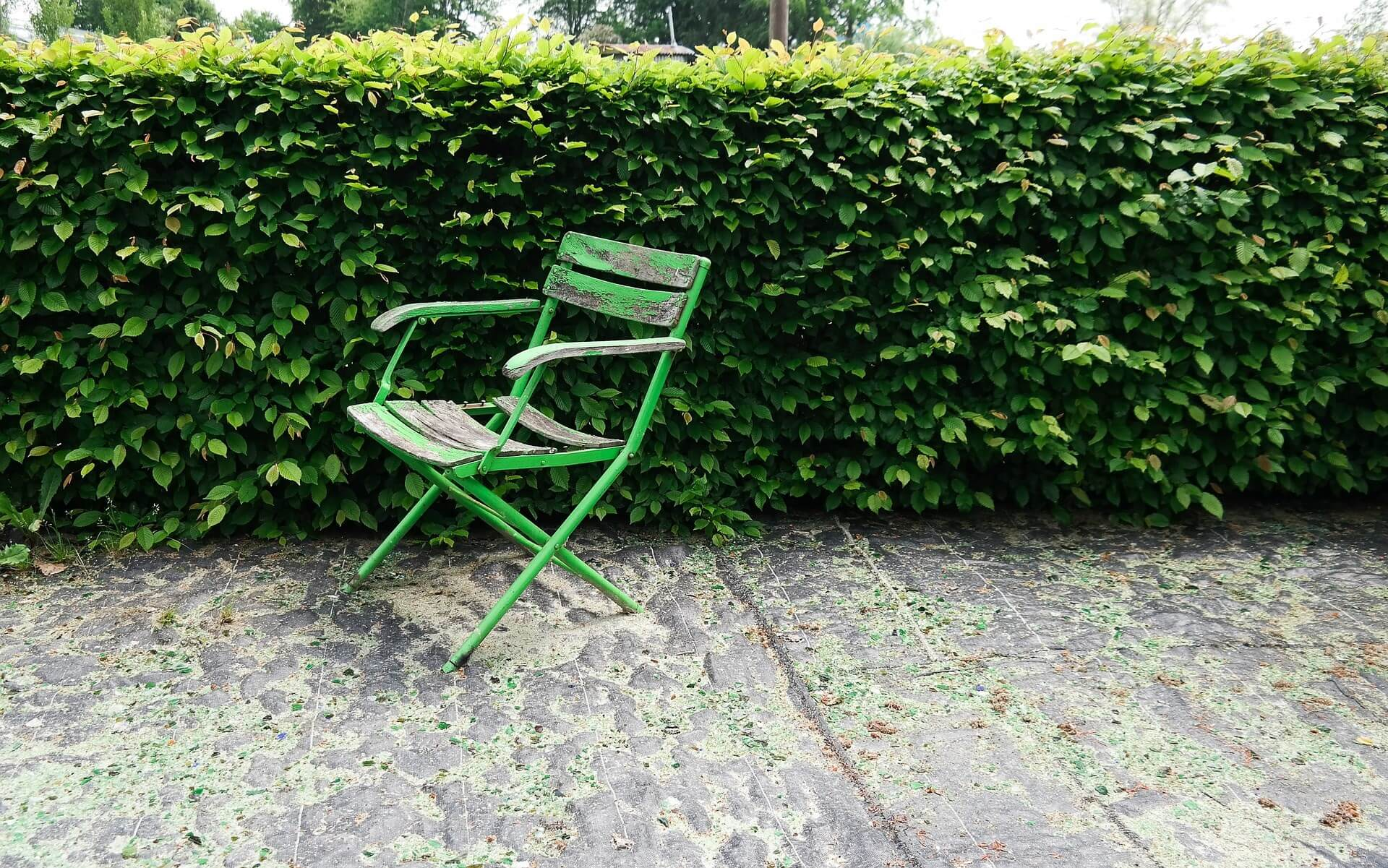 Hedge and green chair