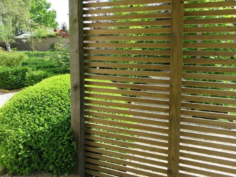 The Best Climbing Plants For Fencing Jacksons Fencing