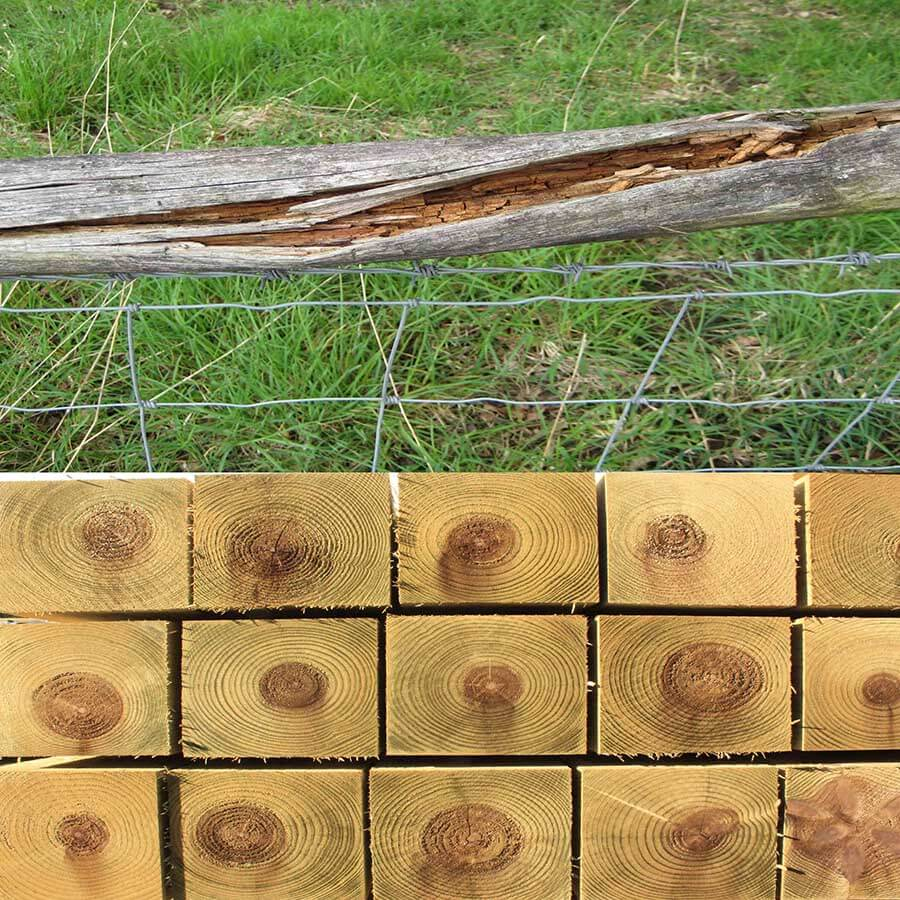 Pressure treated fence post vs rotten fence post