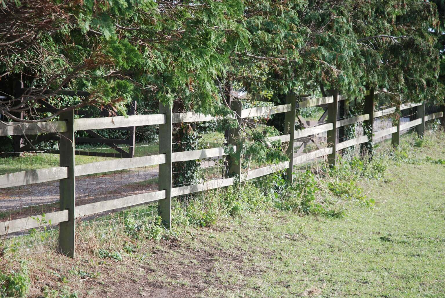 Jacksons post and rail stock fence