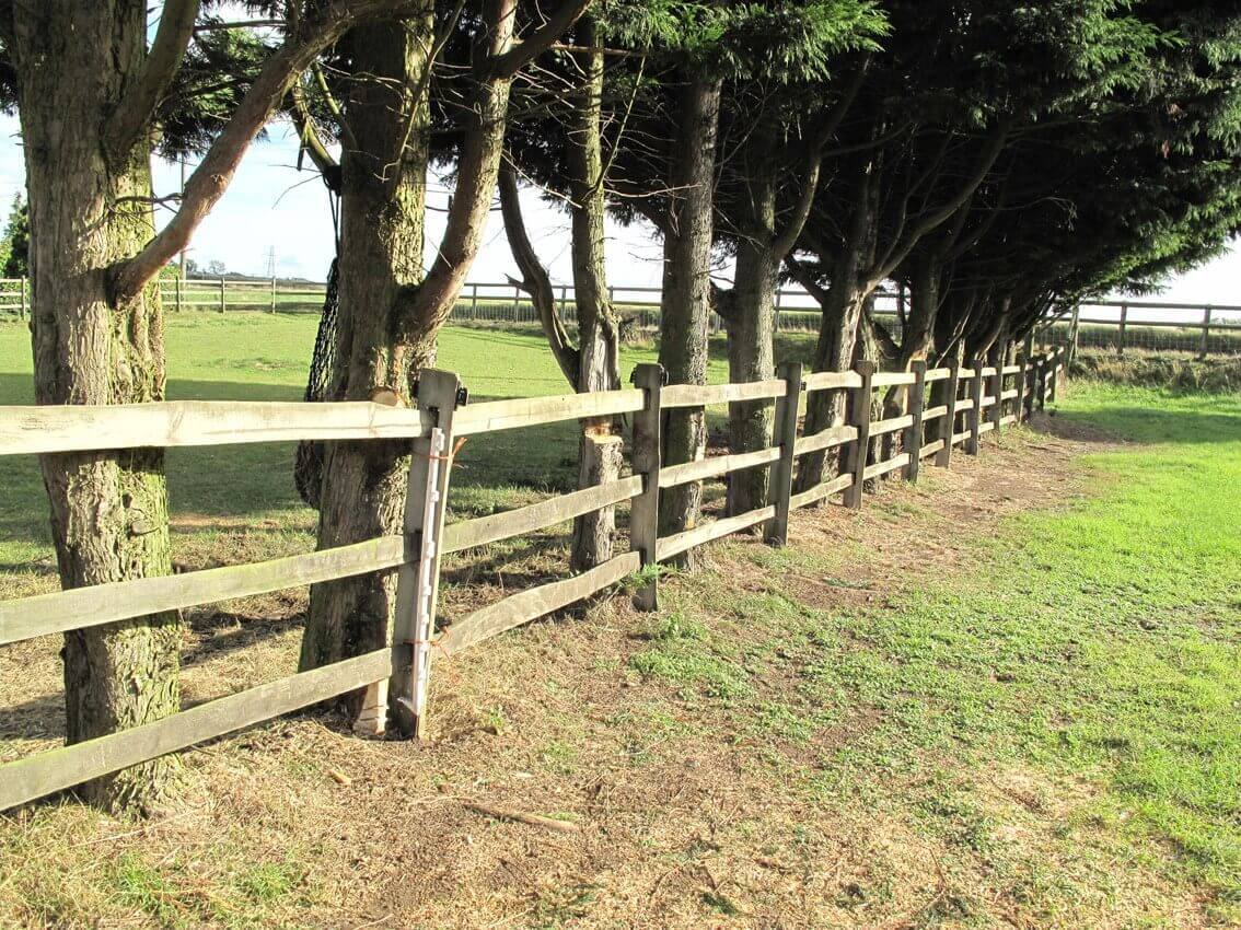old Jacksons fence