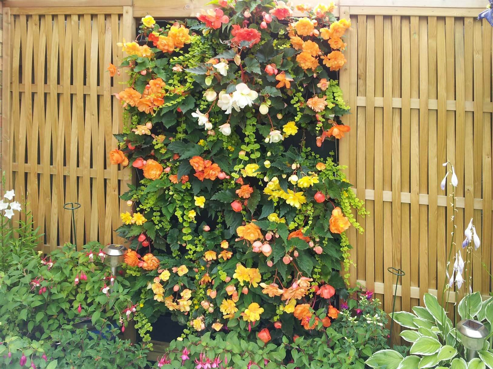 flowers in living wall fence panel
