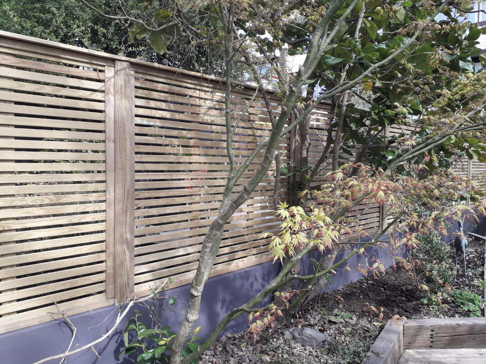 Increasing sunlight with fencing