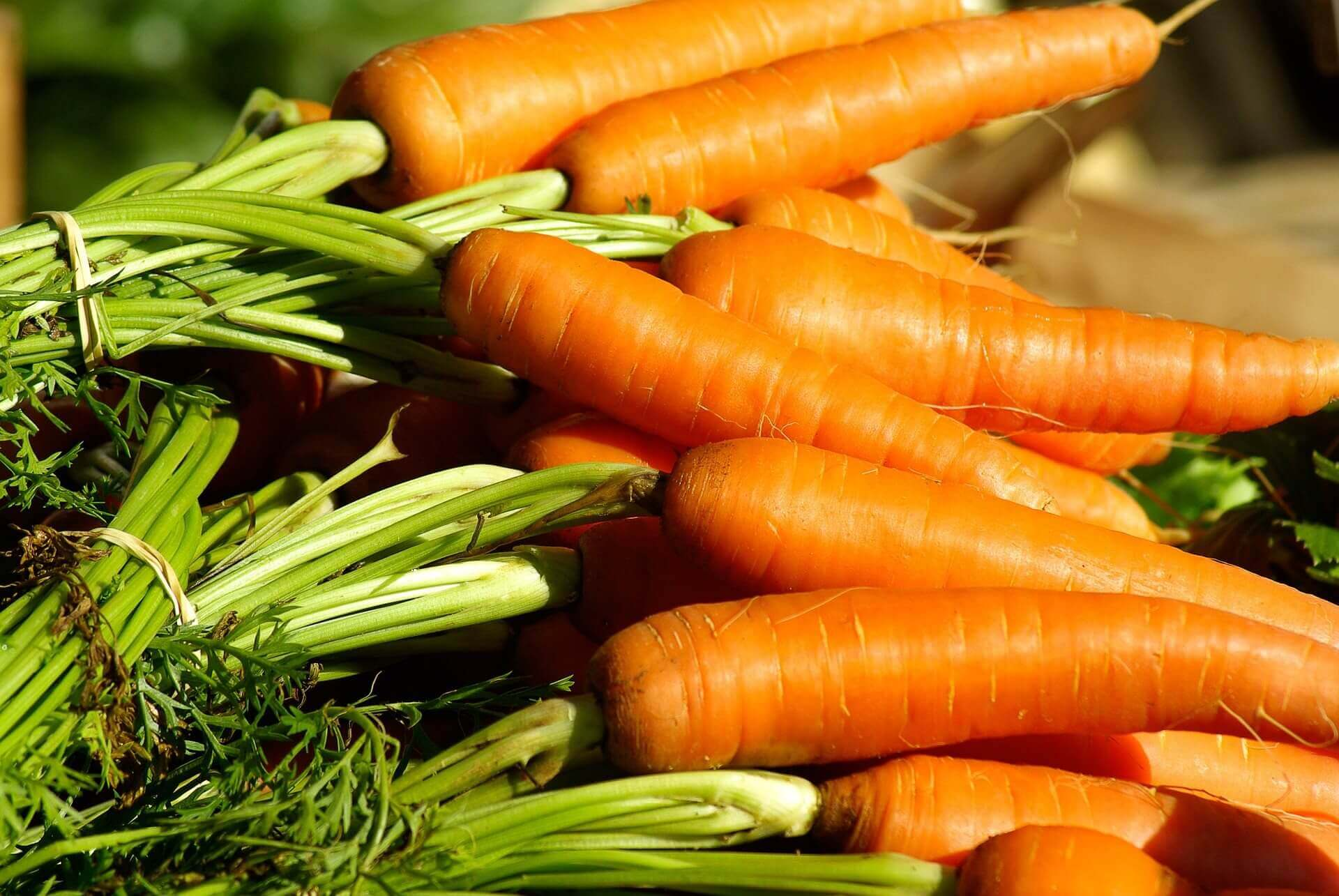 vegetables-carrots - Pixabay
