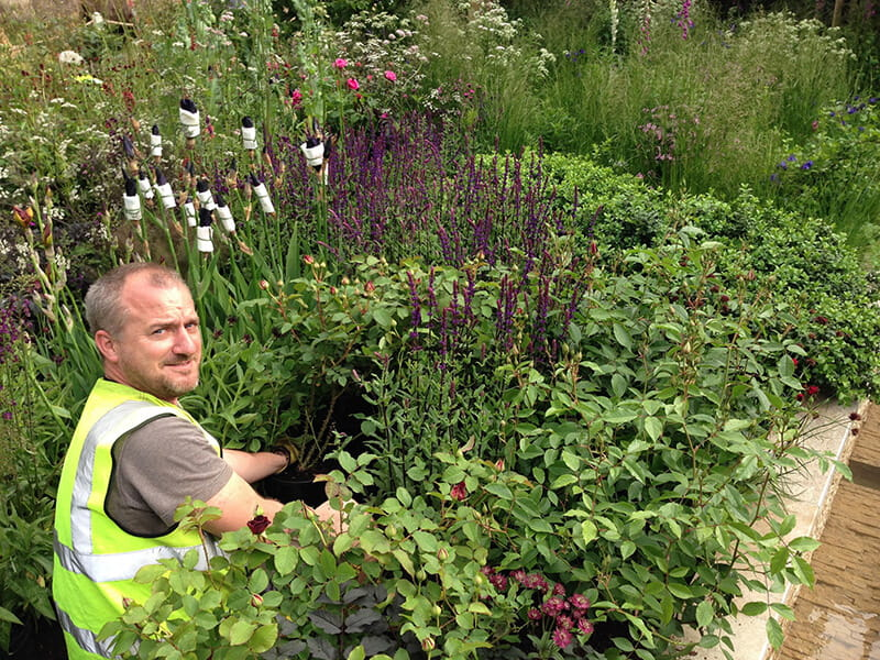 Jon Sims helping plant at RHS Chelsea