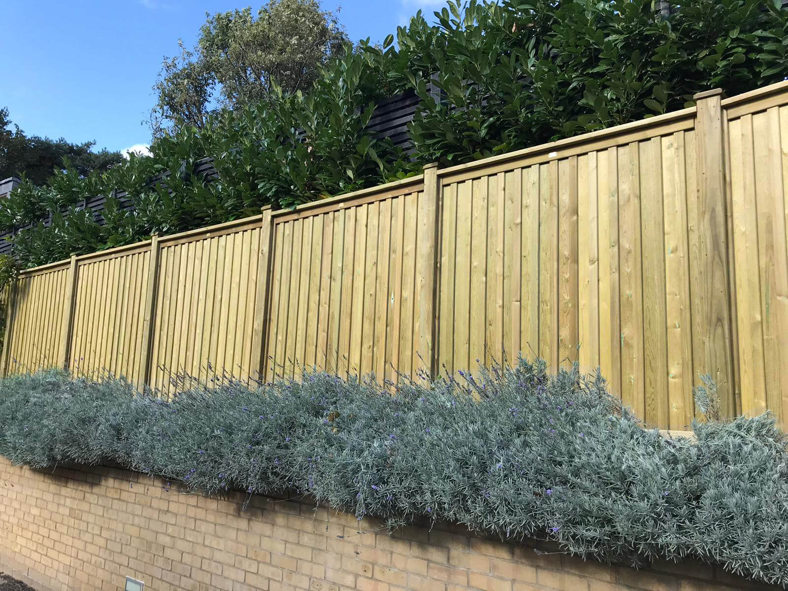 Quality fence panels - Chilham