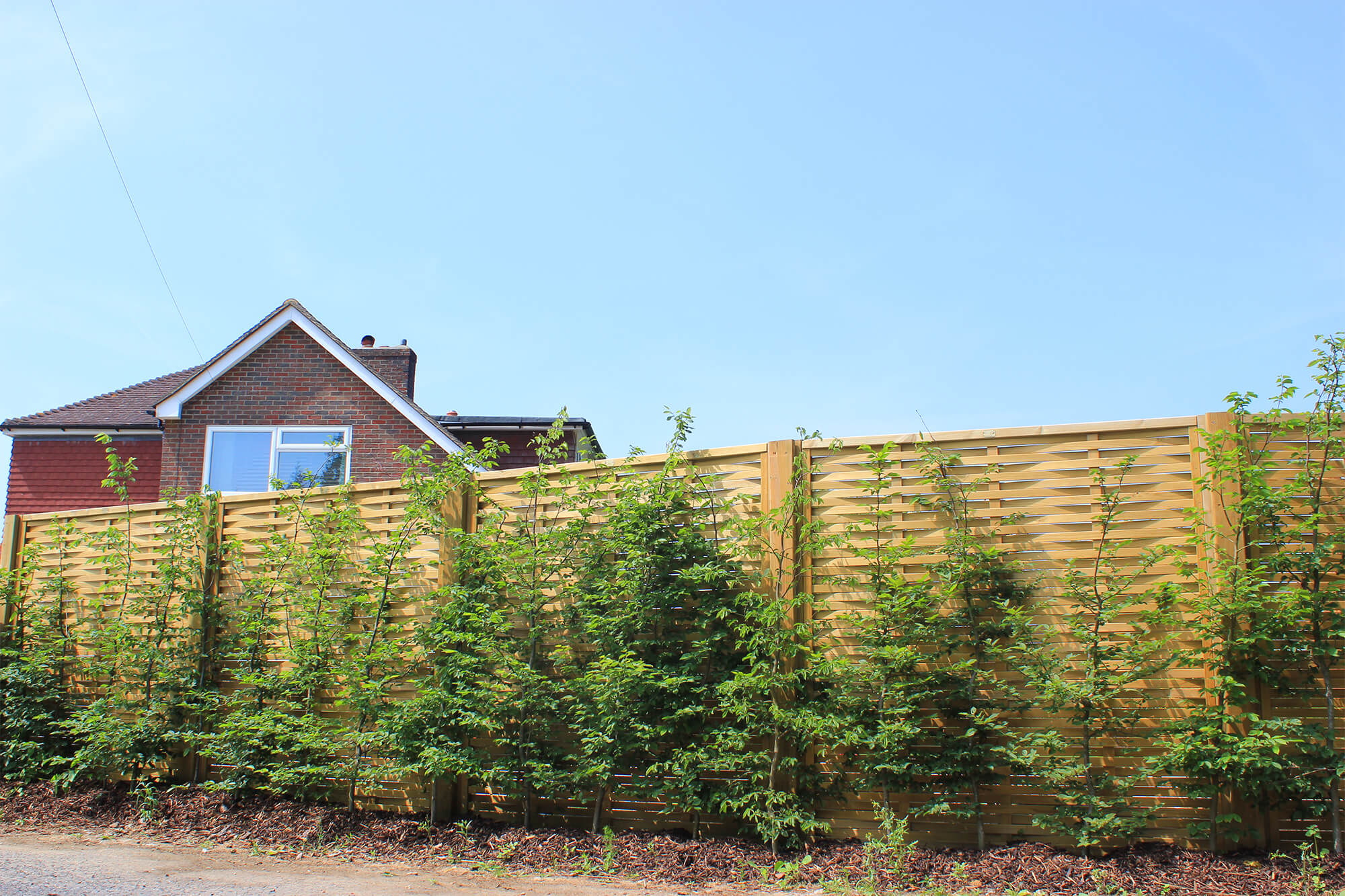 Jacksons Woven fence panels
