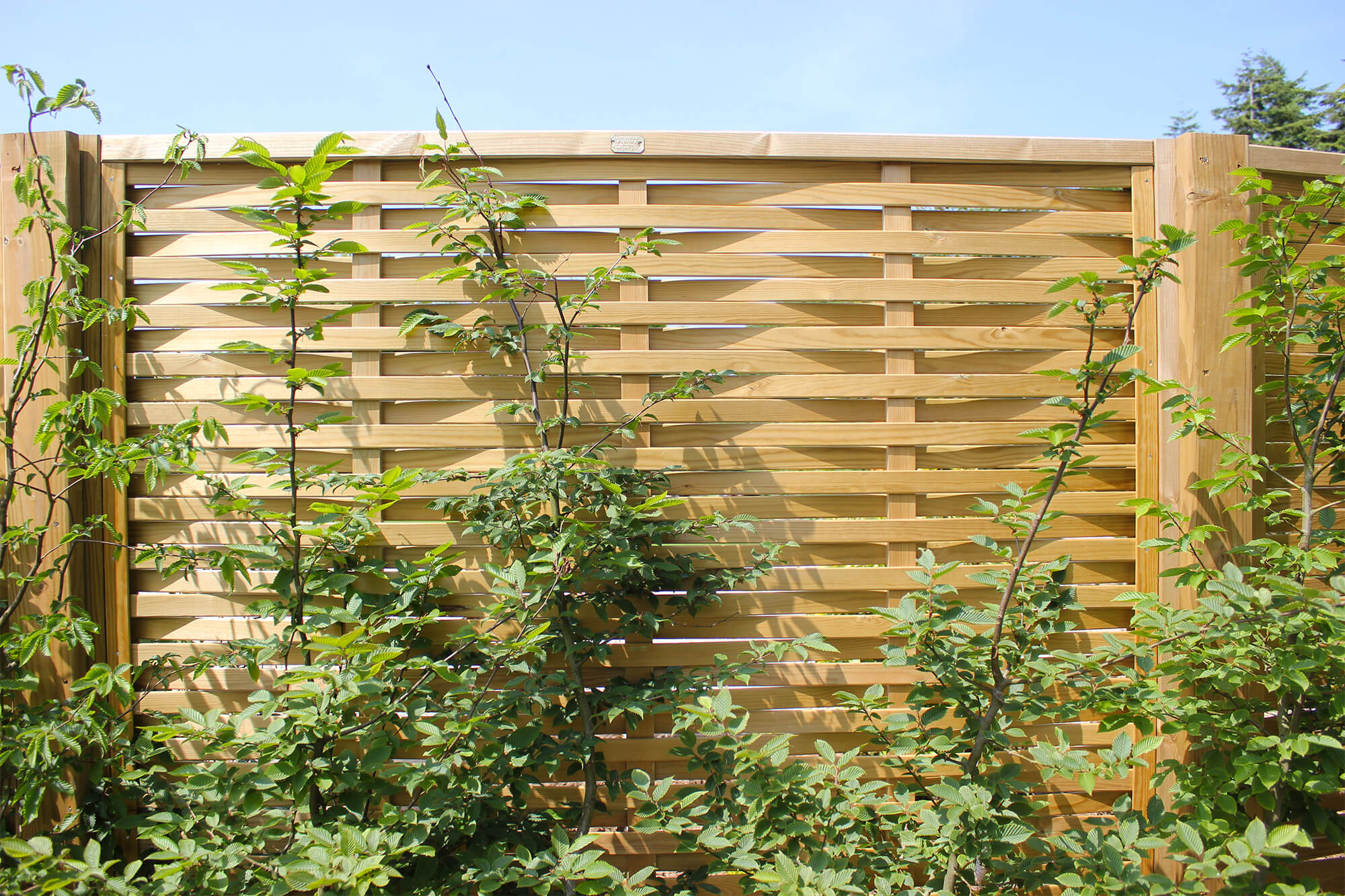 Woven Fences Woven Wooden Fences Jacksons Fencing