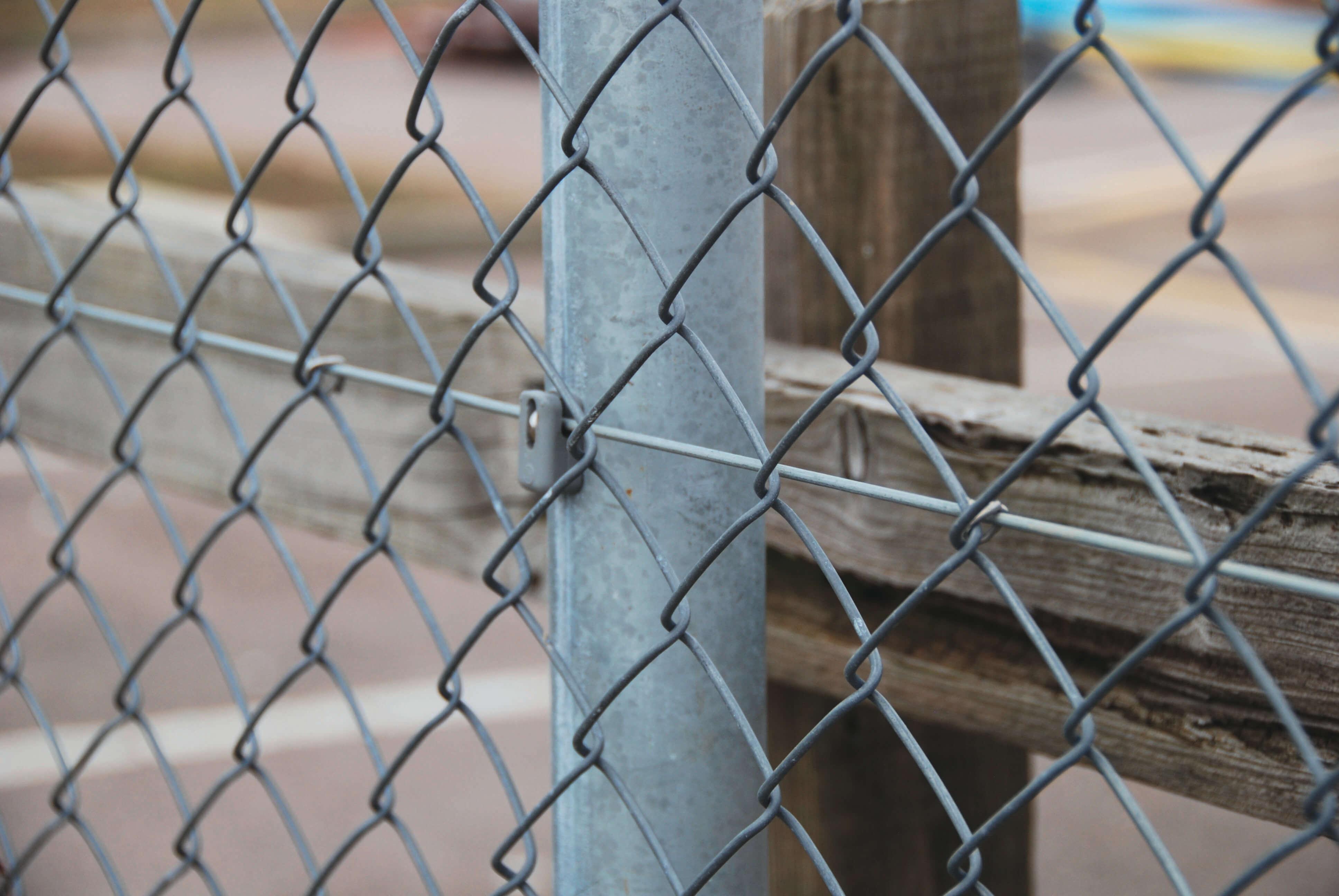 Dog fencing | Jacksons Fencing