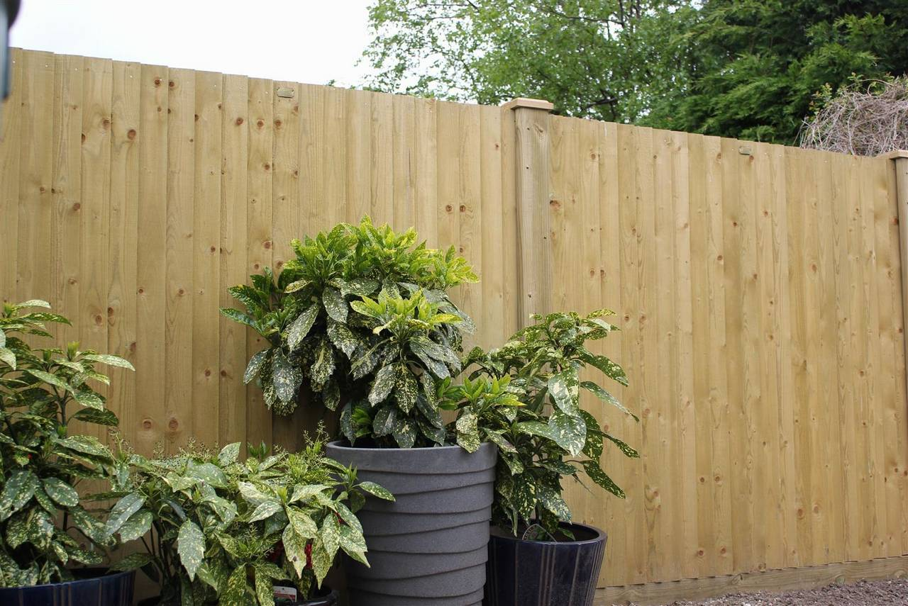 1 35m Featherboard Wooden Fence Panels Jacksons Fencing